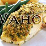 eat wahoo